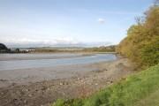 The Laira estuary, River Plym (3)