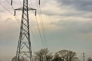 Powerlines and Horses