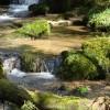 Stream near Constantine