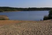 The north east beach at Frensham Great Pond