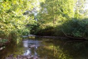 The River Yeo at Bish Mill