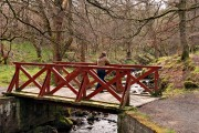 The Wee Bridge