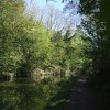 Grand Union Canal - Summit Level, Tring