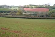 Farmland near Maddacombe Cross