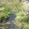 River Worth - Ebor Lane