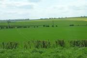 Farmland West of Wold Newton