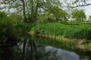 The River Chelmer