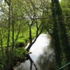 River Coly at Colyford