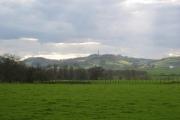 Farmland near Kirkland.