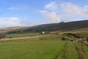Pastures, West Allen Dale
