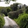 Lane to Moretonhampstead