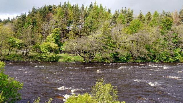 River Tees below Holwick Head Bridge