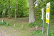 Woodland near Kent's Hill