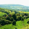 Crickley Hill Country Park (11)