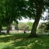 Playground  near Clifton Down