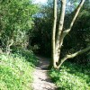 Footpath to Churchdown Hill