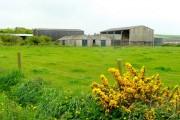 Greencliff Farm