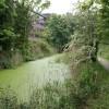 Alderman canal local nature reserve