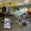 Fairchild F24 Argus