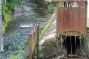 River Ashburn, Ashburton