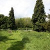 St Mary, Stalisfield, Kent - Churchyard