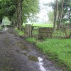Muddy lane, Bracky