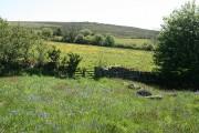 Widecombe in the Moor: towards Wind Tor