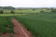 Mixed farming at Churcham