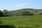 Widecombe in the Moor: towards Corndon Tor