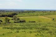Woodley Farm