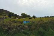 Shirecliff Farm