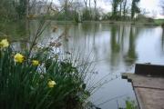 Fishing lake near Weston
