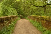 Bridge over the Churnet