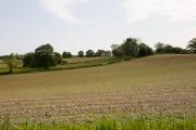 Rolling farmland on Hill Farm