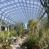 Arid House at the Winter Gardens
