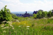 View from Hatherstone Wood