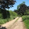 Bridleway to Claxton