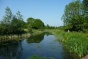 Mid Devon : Grand Western Canal
