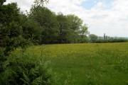 Farmland above Cwm-Howell.