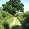 Bridleway to Ferry Road