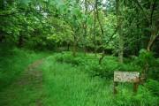 Public Footpath through Muncaster Castle Estate