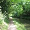 Shadows stretch across the towpath on the Grand Union Canal