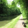 The Towpath of the Grand Union Canal east of Bridge No 134