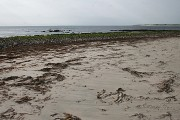 Beach at Kilpheder