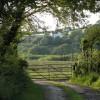 Cilfrey Isaf farm through farm gate