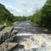 The River Ure below the Aysgarth Lower Falls