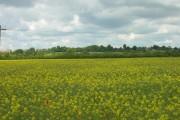 Farmland South East of Hutton