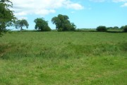 Farmland West of Rotsea Carr Farm