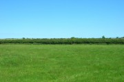 Farmland, Eastfield Farm