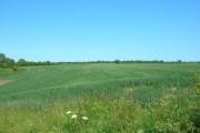 Farmland South of Old Howe